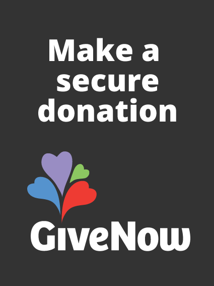 give now button for SE Junction